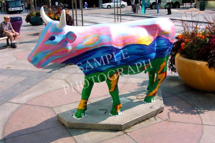Cows On Parade - YourHub.com