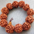 18mm Rudraksha Bodhi Pu-Ti Beads Tibet Buddhist Prayer Mala Bracelet  T2367