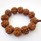 20mm Rudraksha Bodhi Pu-Ti Beads Tibet Buddhist Prayer Mala Bracelet  T2638