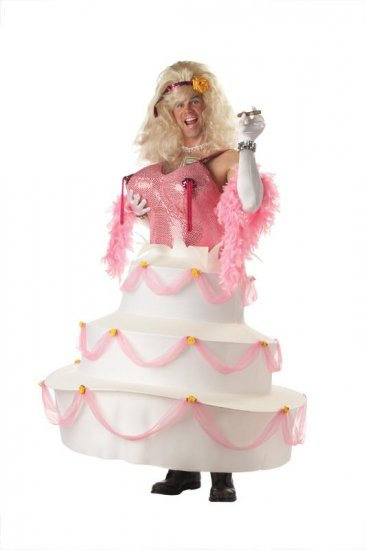 Bachelor Party Babe Adult Costume #01037