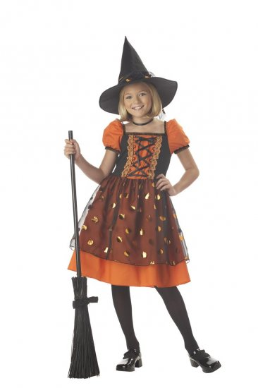 Pretty Pumpkin Witch Child Costume Size: Small #00315