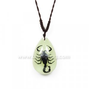 Lucite Jewelry Real Insect Black Scorpion Necklace