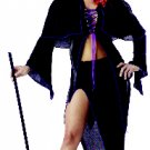 Spellbound Witch Adult Costume Size: Medium #00739