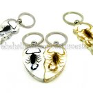 Real Scorpion Half Heart Key Chain - Insect Valentine Jewelry