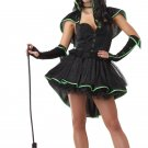 Wizard of Oz Bewitching Wicked Witch Adult Costume Size: Small #01221