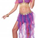 Sexy Exotic Lingerie Belly Dancer Adult Costume Size: Medium #01330