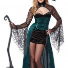 Wizard of Oz Wicked Enchantress Witch Adult Costume Size: Large #01329