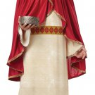 Christmas Nativity Melchior of Persia, Three Wise Men Adult Costume Size: Large ##01322