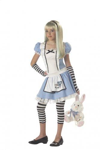 Alice in Wonderland Tween Child Costume Size: X-Large #04012