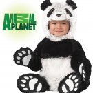 Jungle Panda Bear Infant Baby Costume Size: Large  #10009