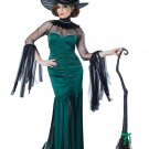 Emerald Witch Grand Sorceress Adult Costume Size: Medium #01574