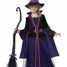 Hocus Pocus Witch Child Costume Size: Medium #00499