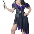 Witch Black Magic Adult Costume Size: Medium #01584