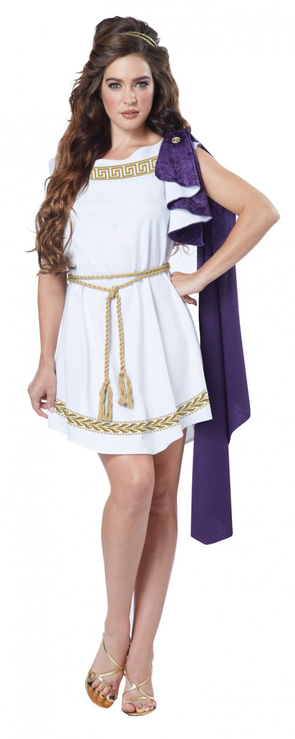 Roman Grecian Toga Dress Adult Costume Size: Small #01591