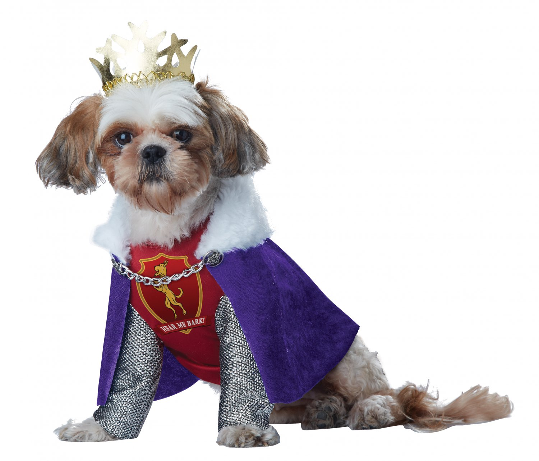 Renaissance King of Bones Pet Dog Costume Size: Medium #20138