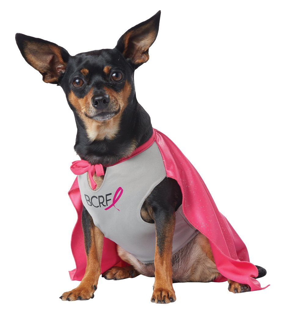 Breast Cancer Research Foundation My BCRF Hero Pup Pet Dog Costume Size: X-Small #20143
