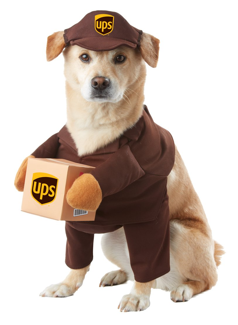 UPS Pal Delivery Service Pet Dog Costume Size: Medium #20151