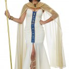 Size: Medium #01438 Queen of Egypt Cleopatra Adult Costume