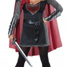 Size: Medium #01434 Joan of Arc Medieval Warrior Valorous Knight Adult Costume