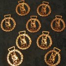 Set of 9 Lion Horse Brasses (Vintage)