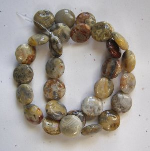"""Crazy Lace Agate 14x5 Coin Beads 15.5"""" strand"""