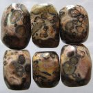6 Leopardskin Jasper 19x14 Nugget Beads