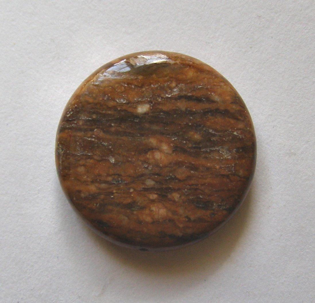 Tiger Jasper 30mm Disc Pendant Bead