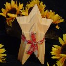 Primitive Wood Puzzle Like Star Plaques~Ready to Paint