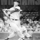 Ted Williams Boston Red Sox TIN SIGN