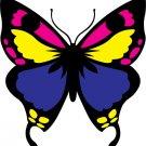 2 Butterflies Colorful Vinyl Wall Decals