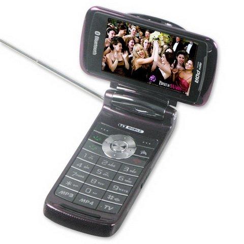 Quad Band Flip TV Cell Phone MV10 With Retato Screen