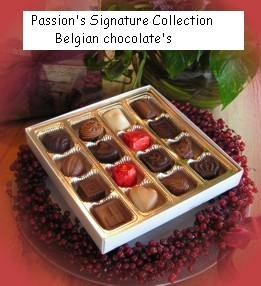Gourmet Belgian Chocolate Signature Collection 16 pc