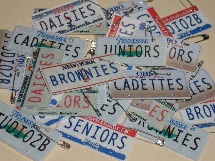25 - License Plate Scout SWAPS - You customize STATE & MESSAGE