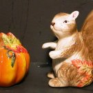 Squirrel & Pumpkin Salt & Pepper Shaker - New In Box
