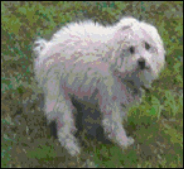Dog Pooping - Lost Dignity Original Cross Stitch Pattern