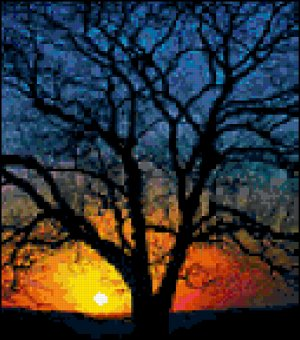 Counted Cross Stitch Pattern - Sunset Lit Tree