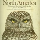 Karalus, Karl E, and Eckert, Allan W. The Owls Of North America (North Of Mexico)...
