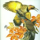Zinsser, William. Roger Tory Peterson: The Art and Photography of the World's Foremost Birder