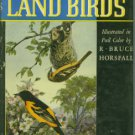Ball, Alice E. American Land Birds