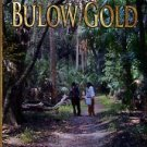 Ryan, William P. Bulow Gold: A Story Of Old Florida