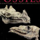 Eldredge, Niles. Fossils: The Evolution And Extinction Of Species