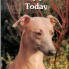 Gilmour, Patsy. Whippets Today
