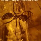 Wilson, Edward O. The Insect Societies
