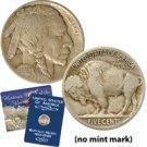 1913 Variety II Buffalo Nickel