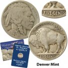 1920 Buffalo Nickel - Denver Mint