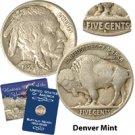 1934 Buffalo Nickel - Denver Mint
