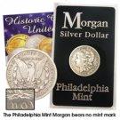 1881 Morgan Dollar - Circulated