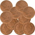 The Old West Collection of Indian Head Cents -- 10 Diff