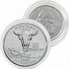 2007 Montana Platinum Quarter - Denver Mint