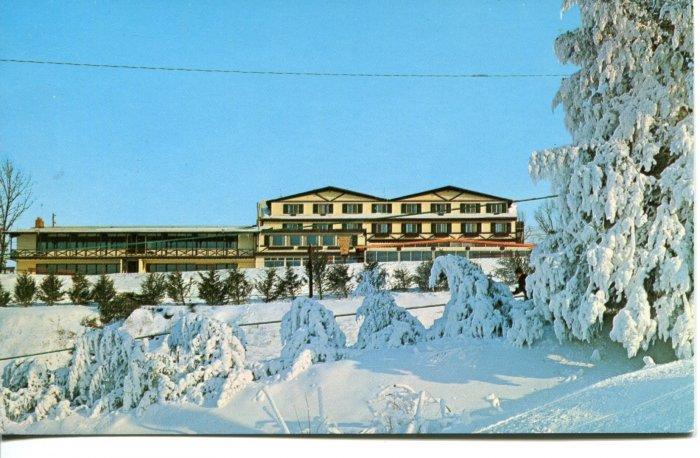 Chestnut Mountain Lodge Illinois Post Card